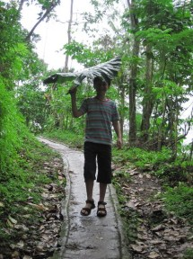 image of a boy using gabi plant as umbrella